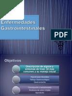 enfermedadesgastrointestinales-