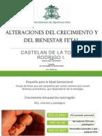 Alteraciones Del Crecimiento y Del Bienestar Fetal