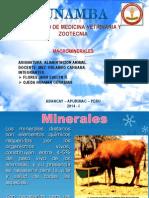 Macro Mineral Es