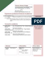 Curriculum Vitae Modelo4a Granate
