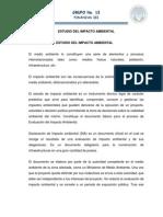 ESTUDIO DEL IMPACTO AMBIENTAL.docx