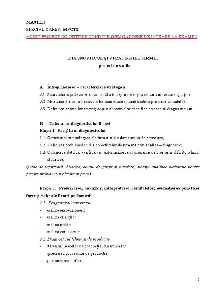 Strategii   Deloitte Romania si Moldova   Analiza optiunilor strategice
