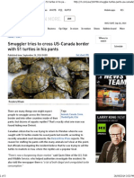 Smuggler Tries to Cross US-Canada Border With 51 Turtles in His Pants
