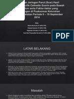 Gambaran Jaringan Parut (Scar) Hasil  Imunisasi.pptx