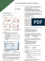 Evaluación Diagnóstica. Quinto grado