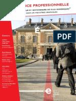 Presentation Licence Flux Numerique.pdf