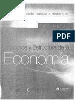Principios y Estructura de La Economia a Distancia