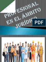 PROFESIONAL EN EL AMBITO JURÍDICO.pptx
