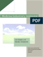 Trabajo Practico-Medicina Industrial