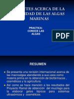 utilidad_de_las_algas_marinas.ppt