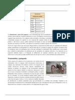 Afanomicosis.pdf