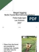 Fis_Ling_Illegal Logging 2