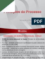 Principios Do Processo
