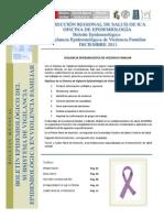 Boletin Mensual Violencia Familiar Diciembre 2011 Final v.01