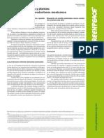 Patentes en Semillas y Plantas