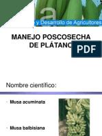 Clase4C Manejo Poscosecha Del Platano[1]