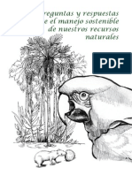 RRNN.pdf