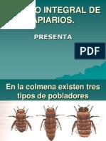 MANEJO INTEGRAL DE APIARIOS.ppt