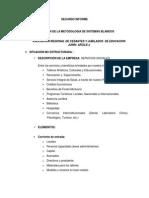Estructura Del Segundo Informe