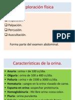 Rinon Prostata
