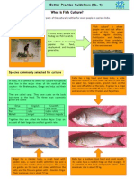 01_What is Fish Culture