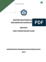 SMP-IPA-rev