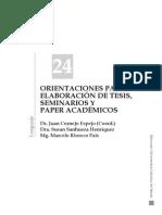 Orientaciones Para La Elaboración de Tesis, Seminarios y Paper Académicos