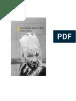 Sánchez Matilde - Los Daños Materiales