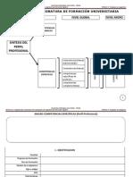 Unidad 3 -  Formato Programa Analítico