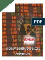 A Estrutura Do Mercado de Ações - Bovespa