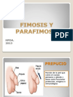 Fimosis y Parafimosis