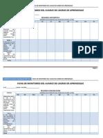 Ficha de Monitoreo de Avance de Logros