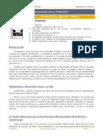 Psicologc3ada de La Atencic3b3n Tema 7