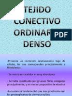 Tejido Conectivo Ordinario- Denso