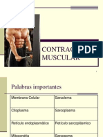 Contra Cc i on Muscular