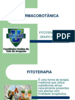 01 Trabalho Fitoterapia - Grupo 6
