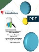 Informe de Diagnóstico Organizacional