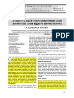 A Study of 2 Rapid Tests to Differentiate Gram Positive and Gram Negative Aerobic Bacteria