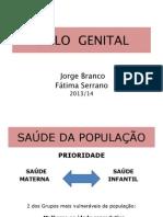 PDF Aula Ciclo Genital