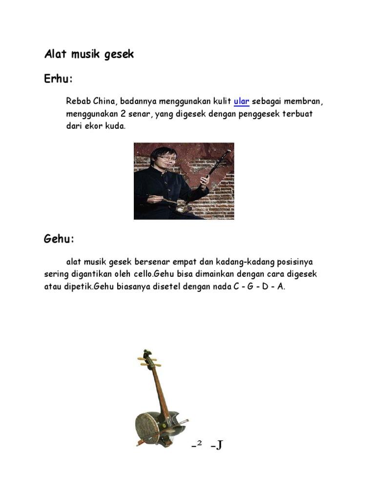 Alat Musik Gesek   PDF