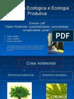 Enrique Leff ppt Saber Ambiental (cap 3 / pág 42-55)
