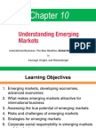 IB Chapter 10 Understanding Emerging Markets (1)