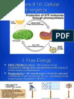 ap - cellular energetics - cell respiration