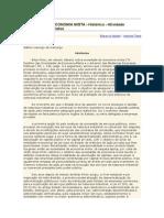 Regime Juridico de Soc. Economia Mista.doc