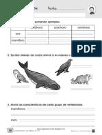 evaluacion_segundo_trimestre_cono.pdf
