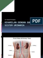 II - Kehamilan Dengan Penyakit Ginjal (Dr. Nanda)