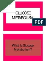 Glucose Metabolism