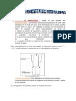 CHOQUES DE PRODUCCION PRACTICO DE GAS 2.docx