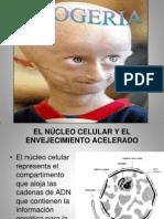 Progeria 1