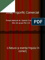 Utilaj Frigorific Comercial